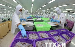 Tăng cường sức cạnh tranh của ngành thủy sản Việt Nam
