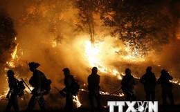 Mỹ ban bố tình trạng thiên tai nghiêm trọng tại bang California
