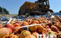 Nga áp thêm lệnh cấm nhập khẩu thực phẩm với 7 quốc gia