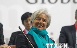 Tổng Giám đốc IMF không loại trừ Hy Lạp phải rời khỏi Eurozone