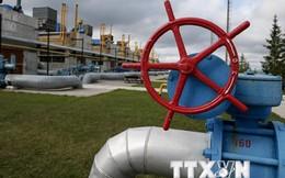 """""""Nền kinh tế Ukraine chạm 'đáy,' khó hồi phục trong tương lai gần"""""""