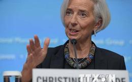 """IMF cảnh báo nguy cơ """"hiệu ứng lan truyền"""" đối với kinh tế toàn cầu"""