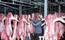 Phát hiện chất cấm trong các mẫu thịt lợn ở tỉnh Đồng Nai