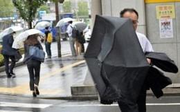 Bão đổ bộ Nhật Bản, hơn 10.000 người di tản