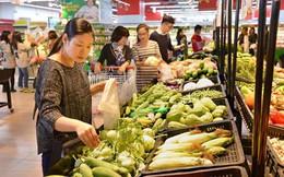 Vingroup rót 700 tỷ đồng trồng rau ở Vĩnh phúc