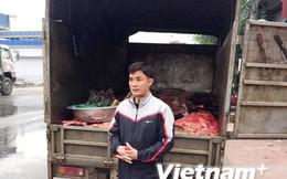 Hà Nội: Bắt giữ 1 tấn nội tạng trâu bò không rõ nguồn gốc