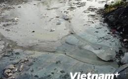 TP.HCM kiên quyết di dời 6 doanh nghiệp gây ô nhiễm môi trường