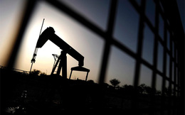 """Giá dầu giảm,  """"Thiên đường"""" sẽ rơi nước mắt?"""