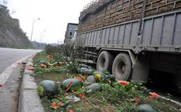 Chờ đợi thông quan hàng chục tấn hoa quả tươi bị hỏng