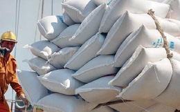 Sẽ xem lại việc khống chế số doanh nghiệp xuất khẩu gạo