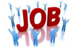 Công ty Chứng khoán Đầu tư Việt Nam thông báo tuyển dụng