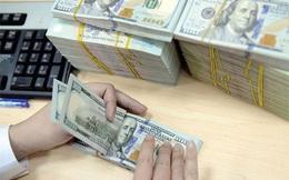 Tiếp tục nhập siêu, tỷ giá USD/VND giữ mức cao