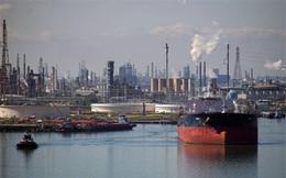 Ngành dầu khí Mỹ đối mặt nguy cơ phá sản hàng loạt