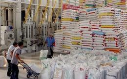Kim ngạch xuất khẩu vùng đồng bằng sông Cửu Long đạt 1,1 tỷ USD