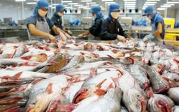 Thủy sản Hùng Vương đăng ký mua 5 triệu cổ phiếu quỹ