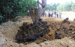 Bộ TN&MT: Di dời lượng bùn thải của Formosa ra khỏi rừng tràm Hà Tĩnh ngay lập tức