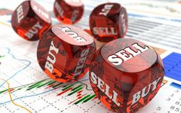 Hàng loạt cổ phiếu đầu cơ giảm sàn, VN-Index xém chút nữa thì đóng cửa trong sắc đỏ