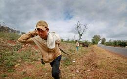 118 hồ chứa nước ở Đắk Lắk trơ đáy