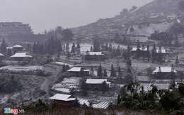 Nông dân thiệt hại tiền tỷ sau mưa tuyết