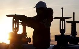IEA đưa ra dự báo nghiêm trọng về thị trường dầu mỏ