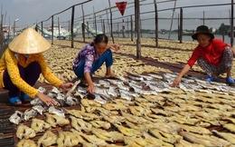 Khô cá tra phồng nhiễm chất cấm: Người chế biến lên tiếng