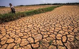 WB: Việt Nam thiệt hại 30.000 tỷ đồng mỗi năm do thiên tai