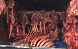 Hà Nội: Bắt giữ nhiều xe ôtô chở thực phẩm bốc mùi hôi thối