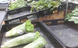 Rau xanh khan hiếm, người Sài Gòn phải đi chợ sớm tìm mua