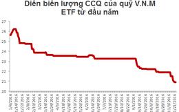 Hai quỹ ETF bị rút ròng hơn 113 triệu USD từ đầu năm