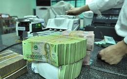 Yêu cầu Vietinbank, BIDV trả cổ tức bằng tiền: Chính phủ nên thoái vốn dần tại các ngân hàng