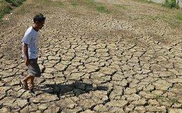 Đất đai cạn kiệt, nông dân trông chờ vận may