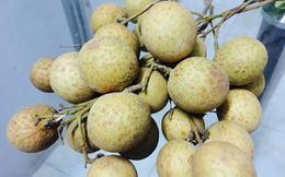 Tẩy trắng hoa quả bằng lưu huỳnh: Điều gì đáng sợ nhất?