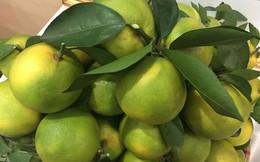 Bậc nhất Việt Nam: Bán trái cây mỗi năm thu 2.600 tỷ