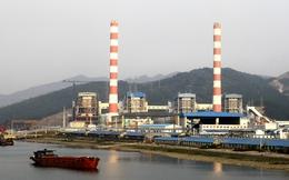 Nhiệt điện Quảng Ninh có lỗ lũy kế hơn 1.100 tỷ đồng