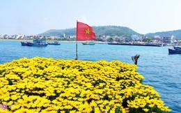200 tỷ đồng xây cảng hiện đại ở đảo tiền tiêu Lý Sơn