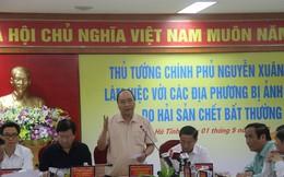 Thủ tướng Nguyễn Xuân Phúc: rà soát hết, kể cả Formosa