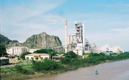 Nhiệt điện Phả Lại dự chi 815 tỷ đồng trả cổ tức năm 2015 tỷ lệ 25%