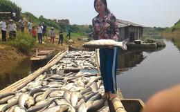 Cty mía đường gây ô nhiễm sông Bưởi đền bù cho người nuôi cá 1,4 tỉ đồng