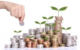 Kêu gọi đầu tư cho khởi nghiệp từ đâu?