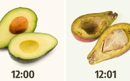 5 sự thật khó tin chẳng ai biết về các loại thực phẩm xung quanh chúng ta