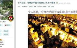 Người Việt học để làm gì ngẫm từ những làn sóng '4 giờ sáng ở Harvard', 'lương khởi điểm 2.000 USD' ?