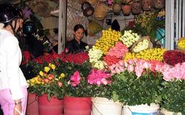 Hoa Đà Lạt: Mục tiêu 30% xuất khẩu có khả thi?