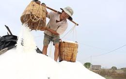 Bán 20kg muối chưa mua được chai nước mắm