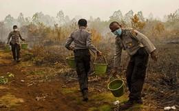 Khiến cả Singapore và Malaysia khốn đốn, cháy rừng ở Indonesia làm hơn 100.000 người tử vong