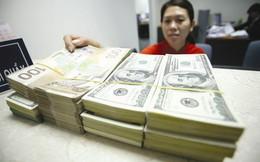 7 tháng đầu năm, NHNN mua được lượng lớn ngoại tệ bổ sung dự trữ ngoại hối