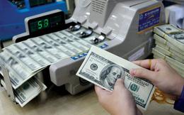 Tỷ giá trung tâm tăng mạnh, USD ngân hàng leo mốc 22.800 đồng