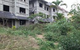 Xót xa nhìn cảnh biệt thự bỏ hoang tràn ngập KĐT Thiên đường Bảo Sơn