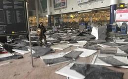 Bỉ nêu nguyên nhân dẫn tới loạt vụ tấn công đẫm máu ở Brussels