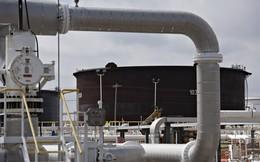 Giá dầu tăng 2% sau 2 phiên giảm liên tiếp