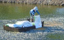 Tiền Giang: Sản lượng cá tra tăng